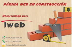 www.iseea.com.bo