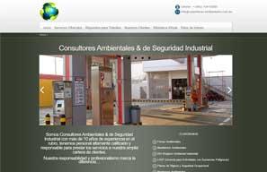 Consultores Ambientales & de Seguridad Industrial